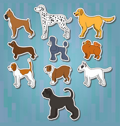 set of cartoon dog breeds vector image