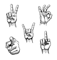 set of hands sketches gestures vector image