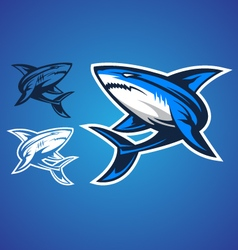 Shark emblem logo vector