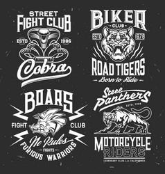 Tiger cobra panther boar t-shirt print mockup vector