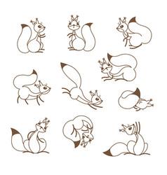 cartoon cute squirrel little funny squirrels vector image