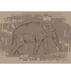 Elephant sketch on grunge background vector