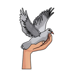 Hand holding dove flying international day of vector