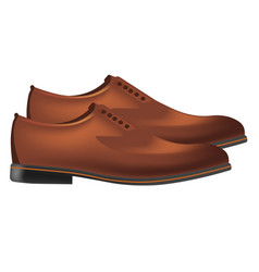 Men classic leather shoes pair in brown color side vector