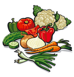 Ripe fresh vegetables vector