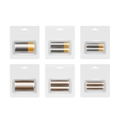 Set of Alkaline AA AAA C Batteries in Blister vector