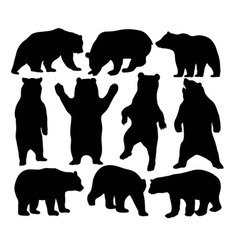 Bear Set vector image vector image