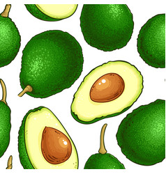 avocado fruit pattern on white background vector image