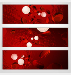 blood cells banners vector image