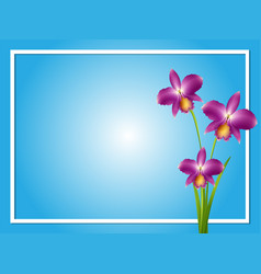 Border template with purple orchid vector