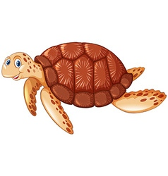 Brown turtle with happy face vector