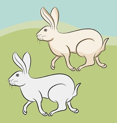 Bunny - rabbit vector image