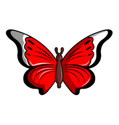 Cethosia biblis butterfly icon cartoon style vector