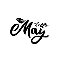 hello may letteringmodern calligraphy vector image