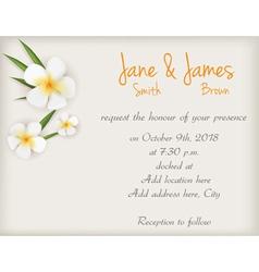 wedding plumeria background vector image vector image