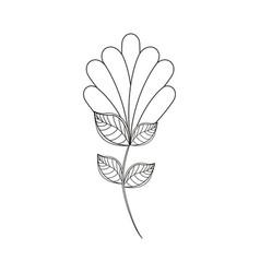 flower decoration natural line vector image