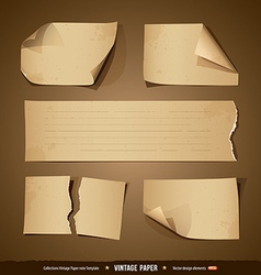 Vintage paper collections empty template vector image vector image