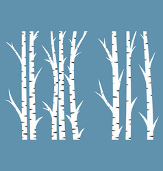 Background with birch wood vector