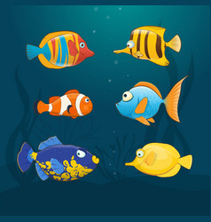 colorful exotic fishes underwater vector image