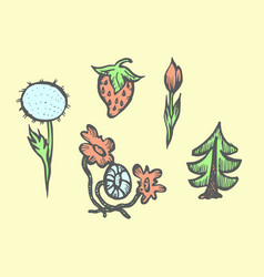 set of plants and flowers hand drawn colorful vector image