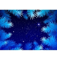 Starry sky in the winter forest Spruce branches vector