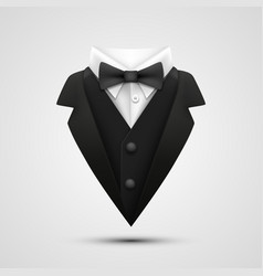 the collar of the jacket on a white background vector image