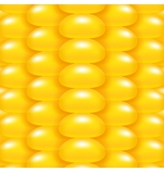Yellow Corn Background vector