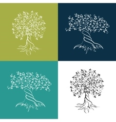 Olive trees isolated outline icon set vector