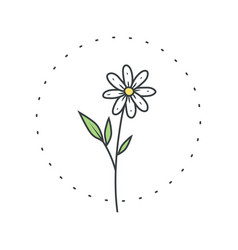 Chamomile flower logo for spa and beauty salon vector