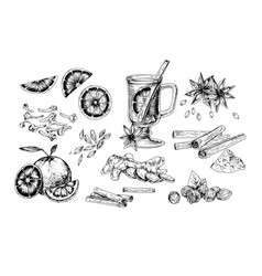 mulled wine and spices realistic vector image