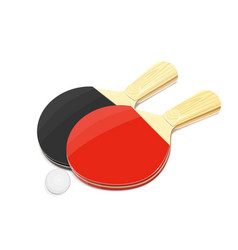 pair of table tennis racket vector image