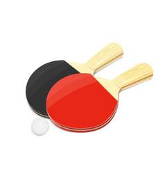Pair of table tennis racket vector