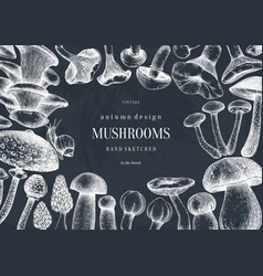 vintage frame design with culinary mushrooms vector image