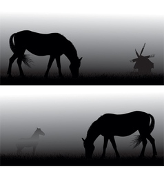 feeding horses in fog vector image