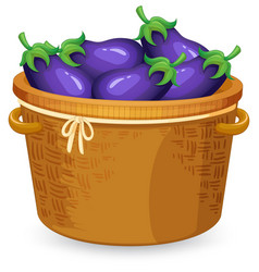 A basket of eggplant vector