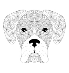 head dog on white background vector image