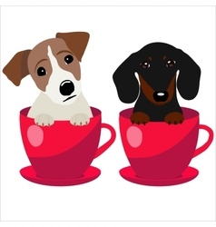 Jack Russell Terrier and Dachshund dog in red vector
