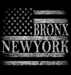 new york city brooklyn stylized american flag vector image