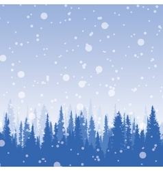 Panorama wild coniferous winter forest vector
