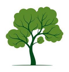 Shape tree with green leaves outline plant in vector
