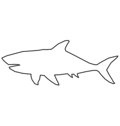 shark outline icon vector image