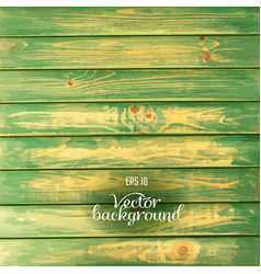 Wood plank green background vector