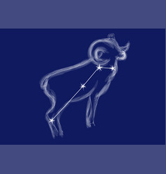 Zodiac sign - aries vector