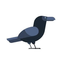 Carrion crow raven with wide-spread wings black vector image