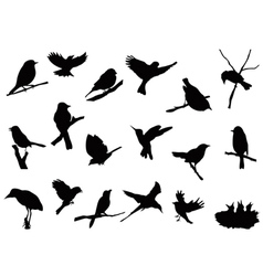 Bird silhouettes collection vector