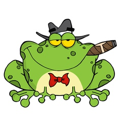 Frog Smoking A Cigar vector image vector image