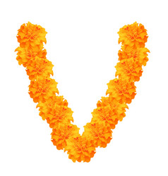 Garland of marigolds vector