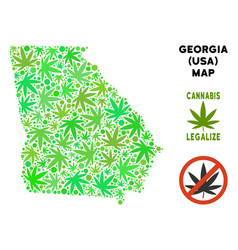 Royalty free cannabis leaves mosaic american state vector