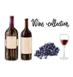 two bottles of red wine with a glass and grape vector image vector image