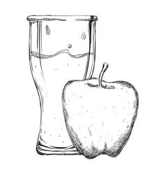 refreshing fruit juice vector image